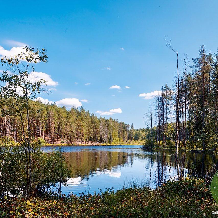 В GREENVALD Парк Скандинавия  у вас всегда будет хорошее настроение🏻 Глядя на такой вид, плохим оно просто быть не сможет🏻 Ждем в любимом парке🏻Координаты: 60.287649, 29.744828