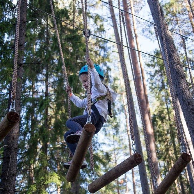 GREENVALD Парк Скандинавия  понравится и взрослым и детям Работаем каждый день с 10.00 до 20.00 Координаты: 60.287649, 29.744828