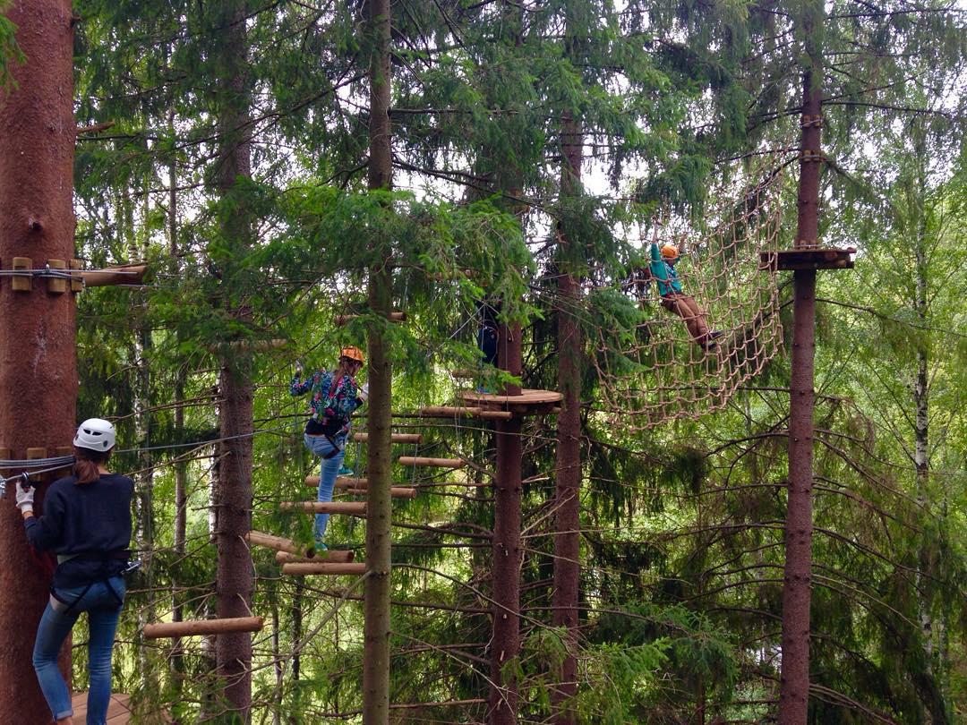 В веревочном парке GREENVALD Парк Скандинавия главное - безопасность🏻 На платформе могут стоять 2 человека, проходить этап нужно по одному🏻 Всем хорошего вечера!Координаты: 60.287649, 29.744828