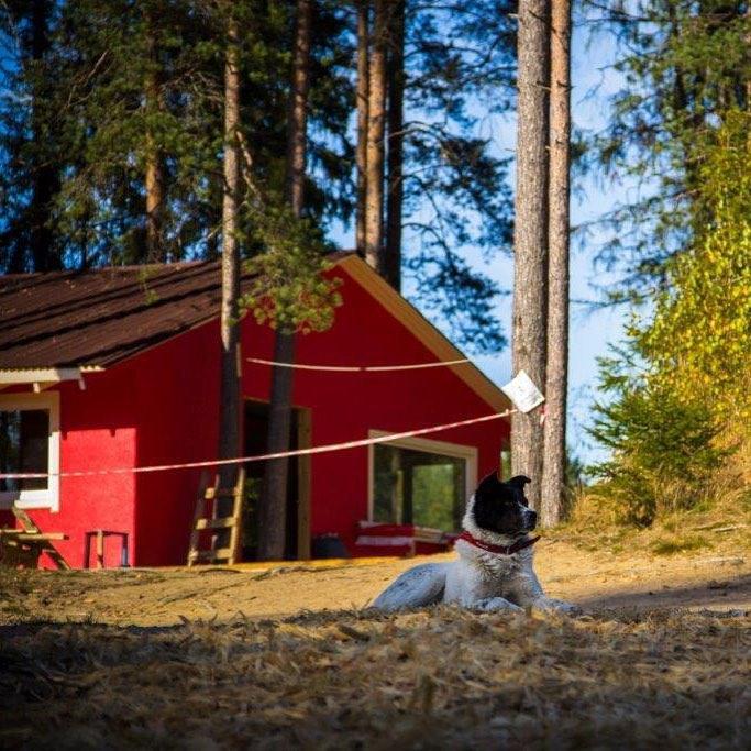 В GREENVALD Парк Скандинавия теперь очень уютно  У нас есть веревочные трассы для детей и взрослых разного уровня сложности, прокат инвентаря, ивент площадка, столики и мангалы у озера, а очень скоро откроется семейный Гриль бар FLANK Grill and BBQ Приезжайте открыты с 10.00 до 19.00 Координаты: 60.287649, 29.744828