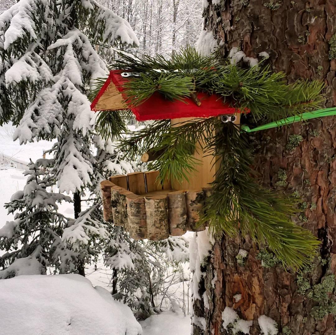 Готовимся к весне. Ждем гостей. Спасибо Володе, что смастерил такие кормушки для птиц в GREENVALD Парк Скандинавия.