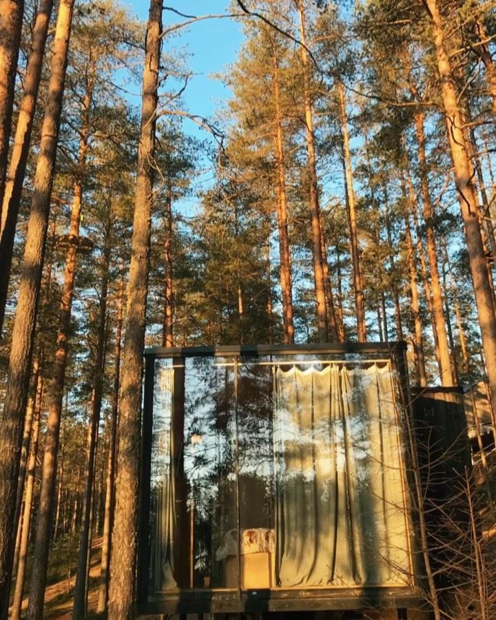 «Ещё один прекрасный день в копилочку воспоминаний на одной из наших любимейших баз отдыха, расположенной на двух берегах лесного озера Радужное, у подножья горы Высокая, которую мы конечно же покорили » @kristina_tolsh   Спасибо за солнечное видео, друзья!️🌲  Эко-дом свободен с 14 по 16 декабря🏻 Бронирование по ссылке в шапке профиля.  Подписывайтесь на наш аккаунт @greenvald_park, чтобы следить за новостями, акциями и предложениями