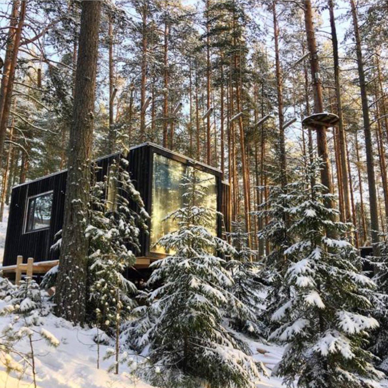 Горящее предложение на 31 декабря️🕰  Последние коттеджи на берегу озера в сосновом снежном лесу в 30 км от КАД и ЗСД со скидкой 20%🏼🏻  Из свободного осталось:  - Треугольные коттеджи (вместимость до 6 спальных мест) - ЭКО-дома (вместимость до 4х спальных мест)🌲 - Тайни Хаусы (вместимость до 4х спальных мест)🏚️  Для гостей парка также всегда доступны: - Русская баня - Ресторан🥗 - Верёвочный парк для взрослых и детей🤸🏻♀️ - Форелевая рыбалка - Скидка проживающим 10% на горнолыжном курорте Пухтолова гора в 5 мин езды - прокат беговых лыж и ватрушек⛷ - Сказочная природа🌲  Бронирование по телефону 409-98-18 и на нашем сайте по ссылке в шапке профиля  Подписывайтесь на наши аккаунты @greenvald_park и @greenvaldfishing, чтобы следить за новостями, и #розыгрышами!