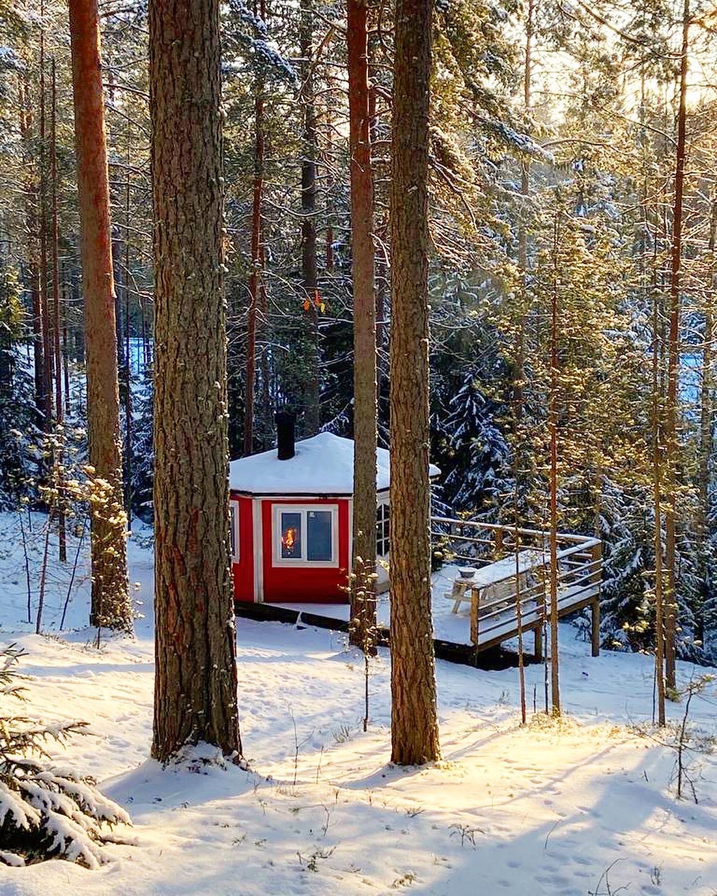 Утеплённые гриль-домики для барбекю в сосновом лесу доступны для аренды круглый год🏻  Расположены в тихом, уединенном месте с видом на озеро и лес🌲🌲Внутри домика финский гриль для барбекю, скамьи, стол, розетки, освещение. Снаружи просторная терраса.  Вместимость: до 10 человек Время аренды: с 10 до 20:00 Стоимость: от 1900₽  Дополнительно можно приобрести: - Прокат шампуров (7шт - 100₽, залог 500₽); - Прокат мангальной решетки (200₽, залог 500₽); - Уголь (250₽); - Жидкость для розжига 0,5 л (100₽).  Забронировать гриль-домик можно по телефону 409-98-18 и на нашем сайте по ссылке в шапке профиля🏻  Подписывайтесь на наш аккаунт @greenvald_park, чтобы следить за новостями, акциями и предложениями🏻